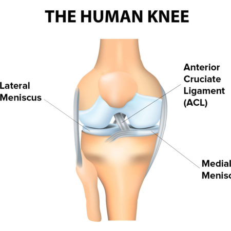 SOCCER – HOW TO PREVENT KNEE INJURIES